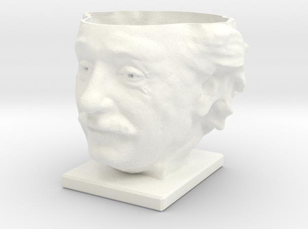 Einstein Air Plant Planter 3d printed