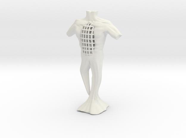 Torso 3d printed