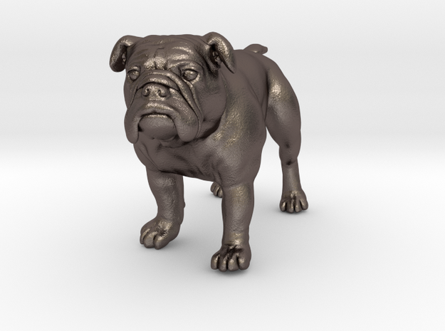 Bulldog S Full Color Sandstone 3d printed alumide, frosted ultra detail, full color sandstone all S size