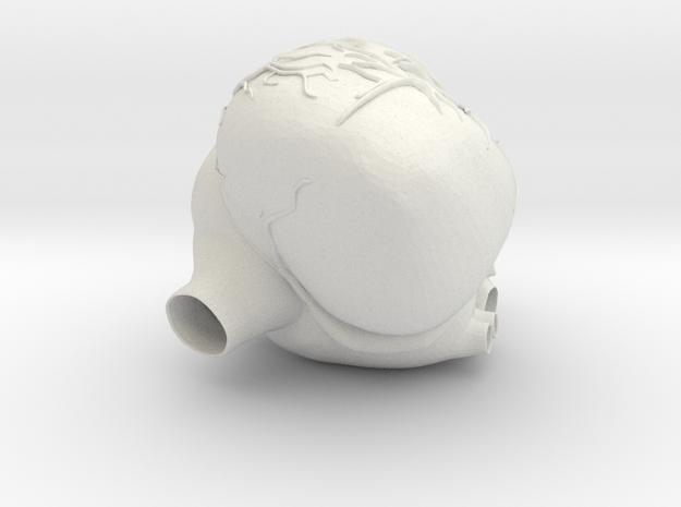 Heartpump in White Natural Versatile Plastic
