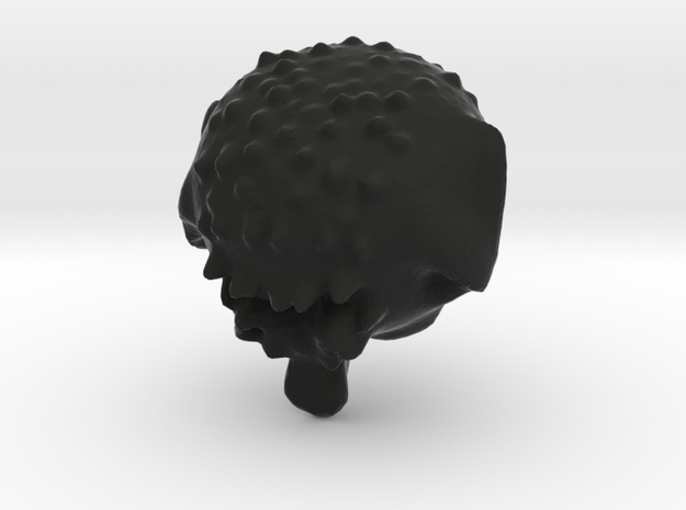 Head from leopolyNEXT 3d printed