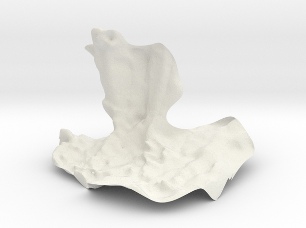 Piedsmaelsolid3fois in White Natural Versatile Plastic