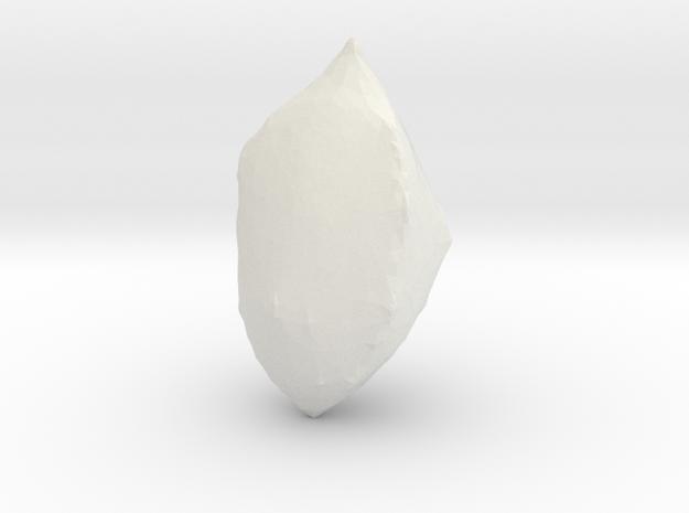 Elettaria kardamum (Kardamom) 3d printed