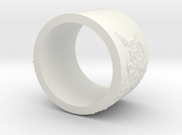 ring -- Sun, 10 Nov 2013 23:24:21 +0100 3d printed