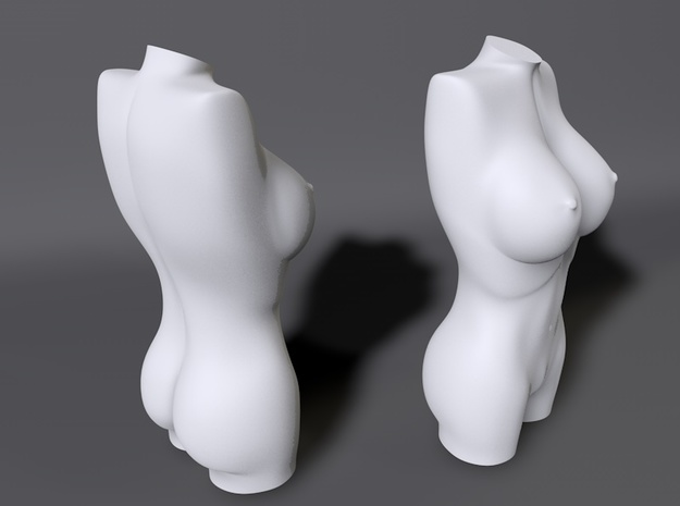 Sculpture Female Torso 6cm 2.4  3d printed 3D render of Female Torso