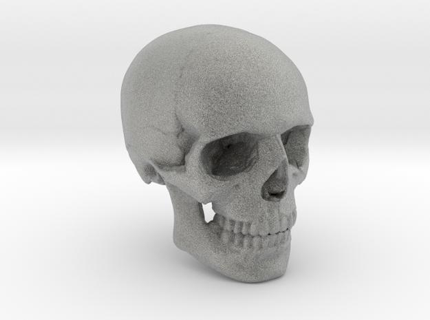 18mm 0.7in Human Skull Crane Schädel че́реп