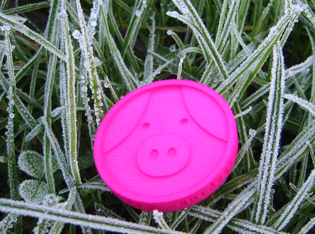 Pigcoin Plastic in Pink Strong & Flexible Polished