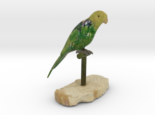 Bird Beauty Lorikeet Full Color by Space 3D  in Full Color Sandstone