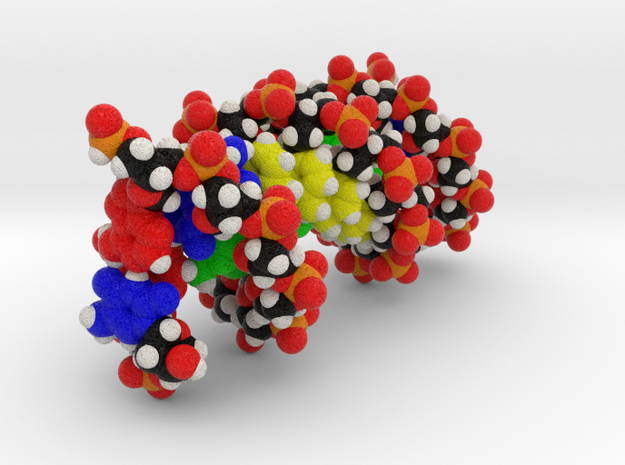 "DNA Molecule Model ""Megan"", Size = Large in Full Color Sandstone"