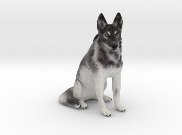 Custom Dog Ornament - Koi