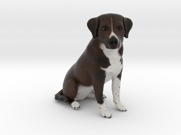 Custom Dog Figurine - Charlie
