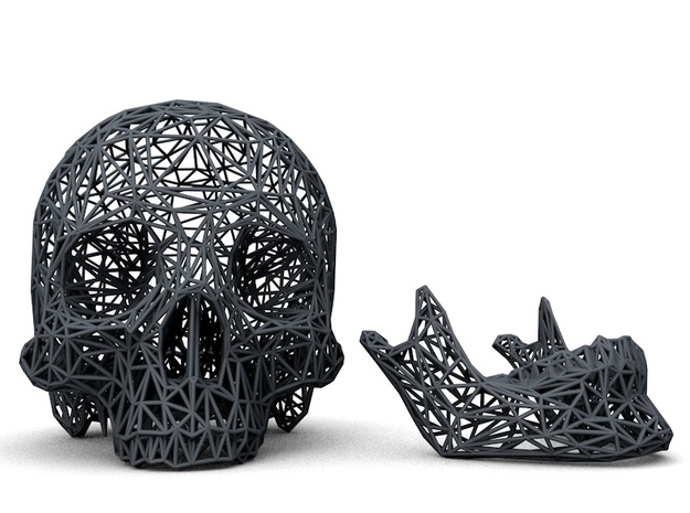 Life Size Poly Skull and Jawbone - Skeleton 3d printed Front View