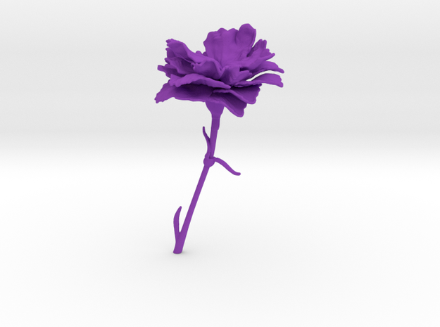 Carnation in Purple Strong & Flexible Polished