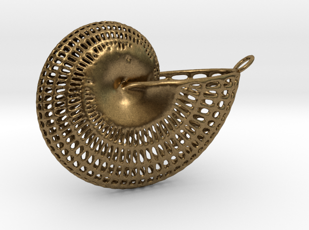 Nautilus Wireframe With Necklace Hoop