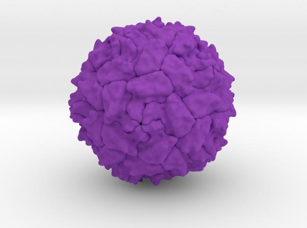 Polio Virus - 1 Million X in Purple Processed Versatile Plastic