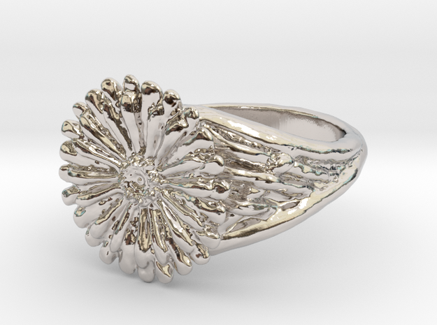 Gerbera Daisy Ring in Rhodium Plated Brass