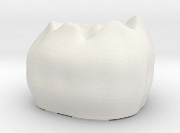 Tooth R3 Top in White Strong & Flexible