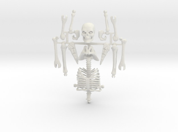 Articulated Skeleton Large