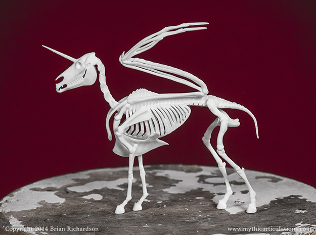 Alicorn Skeleton