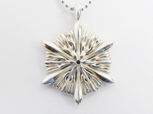 Astrocyathus pendant