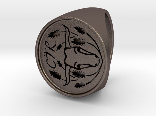Custom Signet Ring 4 in Polished Bronzed Silver Steel
