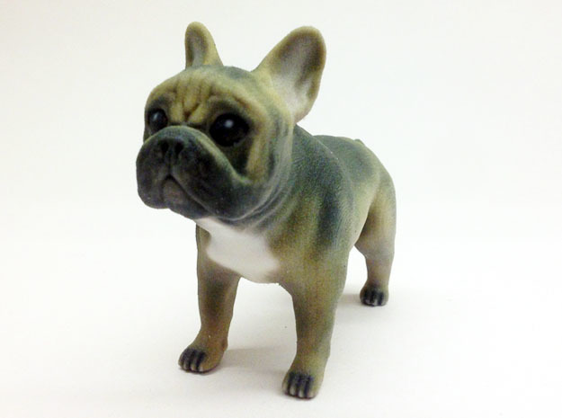 Brown Frenchie in Full Color Sandstone