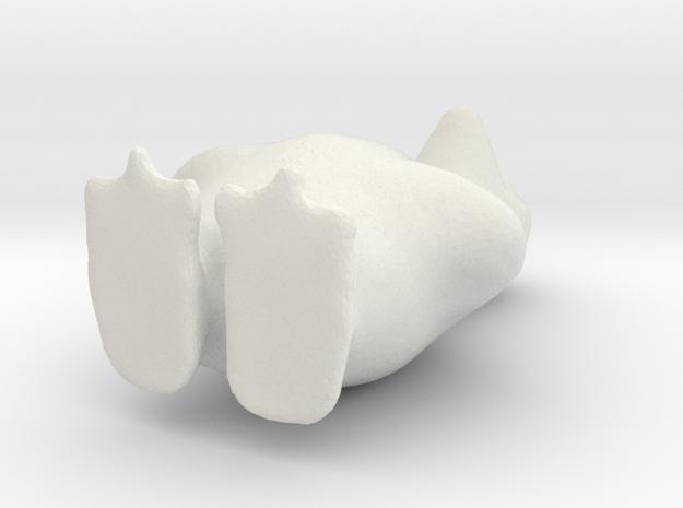 8760 in White Natural Versatile Plastic