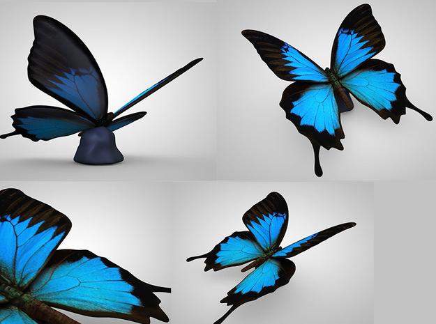 Blue Butterfly 3d printed