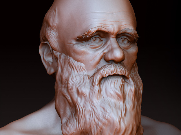 Charles Darwin Bust 3d printed zbrush render of the model