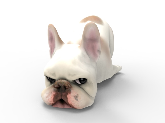 Custom Frenchie Medium in Full Color Sandstone
