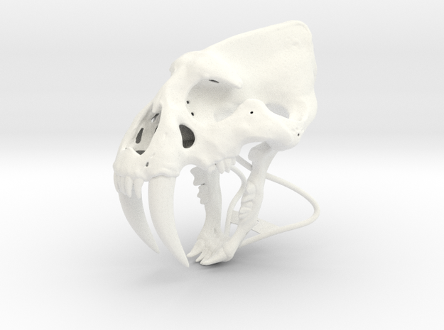 Saber Tooth  in White Strong & Flexible Polished