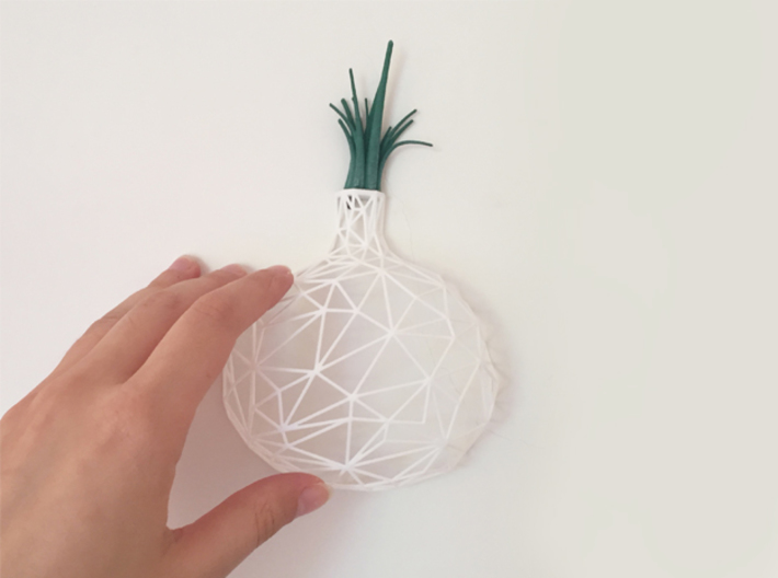 Onion Leaves 3d printed