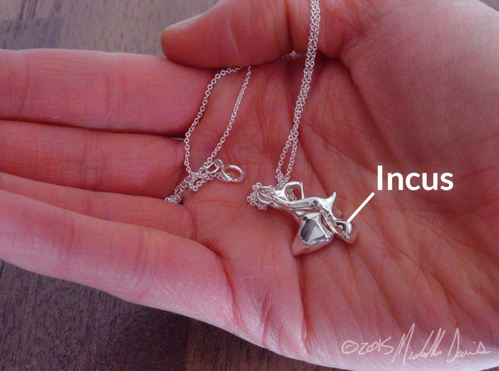 Ossicle Pendant - Incus (right sided) 3d printed IMPORTANT: This listing is for the incus ONLY