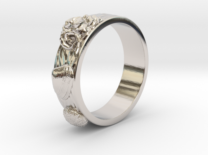Sea Shell Ring 1 - US-Size 3 (14.05 mm) 3d printed