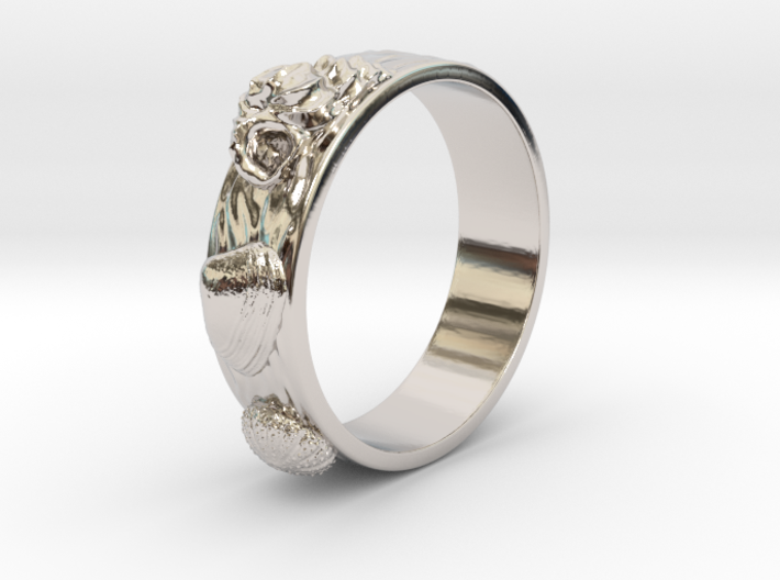 Sea Shell Ring 1 - US-Size 7 1/2 (17.75 mm) 3d printed