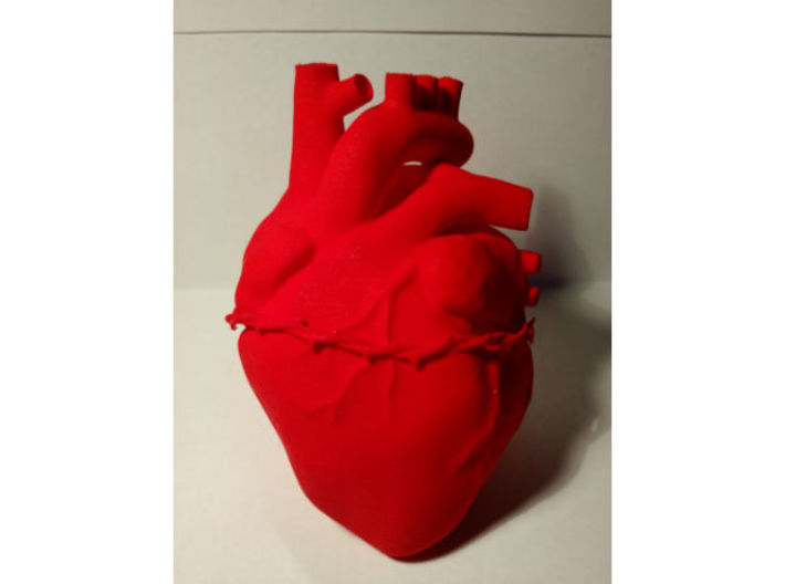 Anatomical Sacred Heart 3d printed Anterior 1