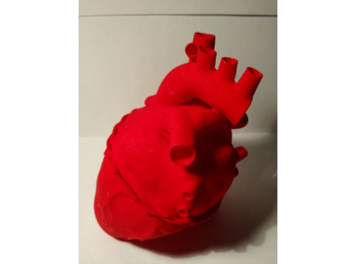 Anatomical Sacred Heart 3d printed Lateral 1