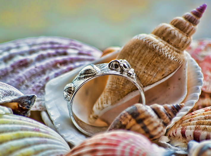 Sea Shell Ring 1 - US-Size 4 1/2 (15.27 mm) 3d printed Seashell Ring in polished silver (shown: size 10)