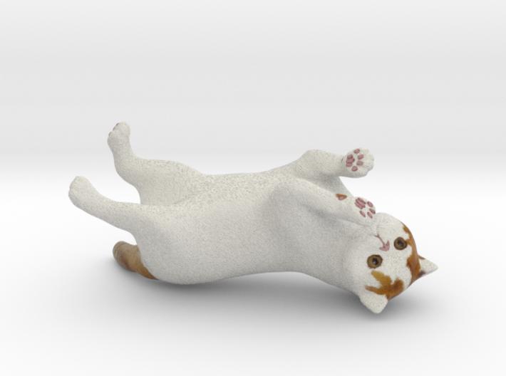 Rolling Exotic Shorthair Cat 3d printed
