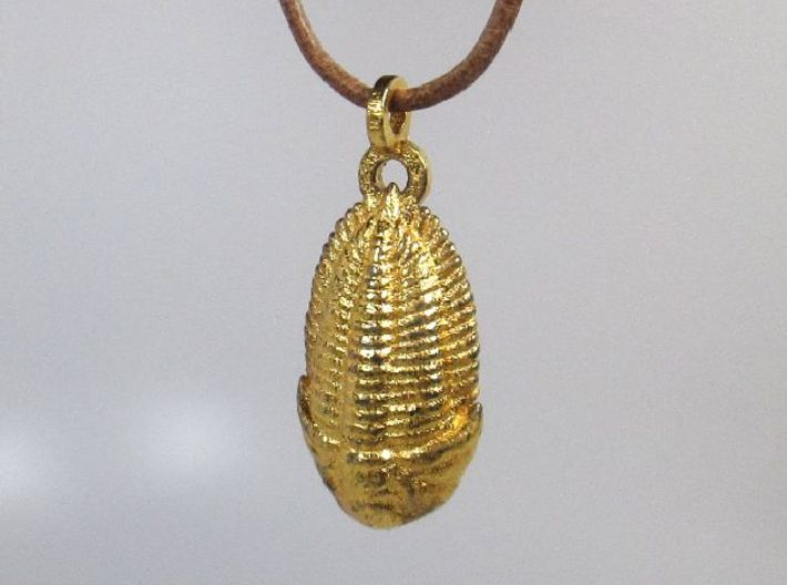 The Trilobite 3d printed Polished Gold Steel