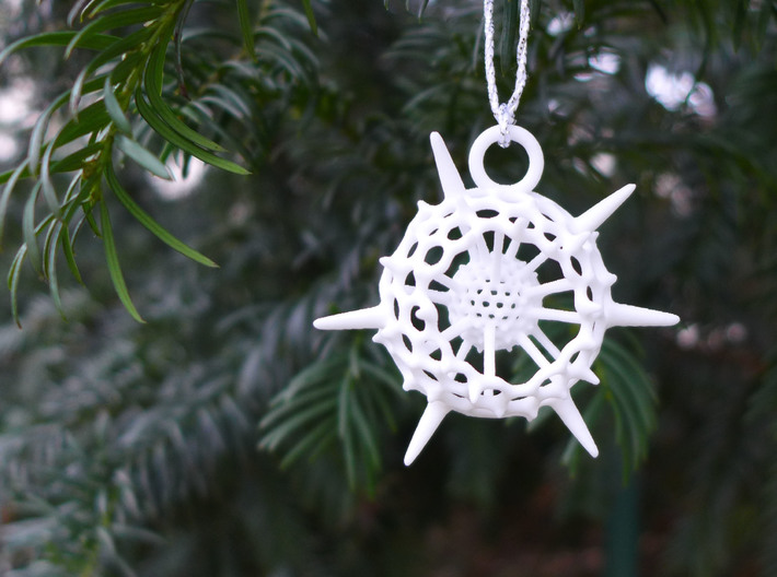 Spumellaria Ornament - Science Gift 3d printed