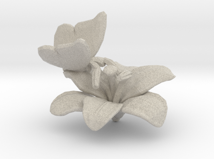 Butterfly And Lily Flower 1 Rock - S 3d printed