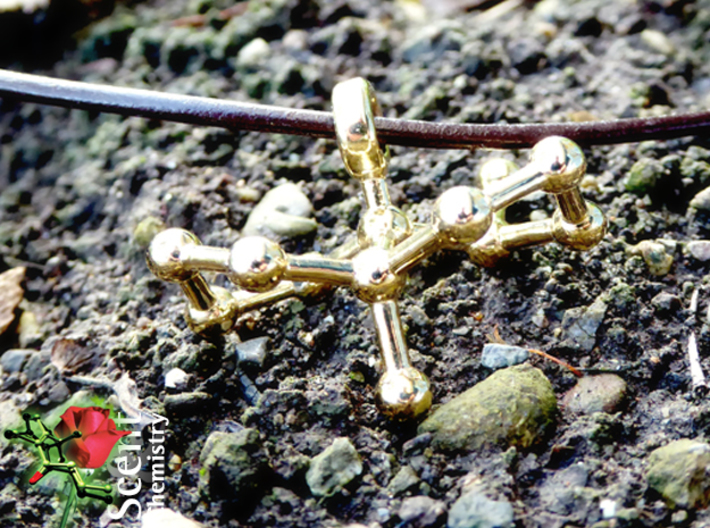 Geosmin 3d printed Geosmin pendant in polished brass on a 2 mm copper-colored leather strap on thawing  humus soil.