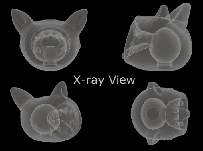 Consumer 3d printed X-ray View