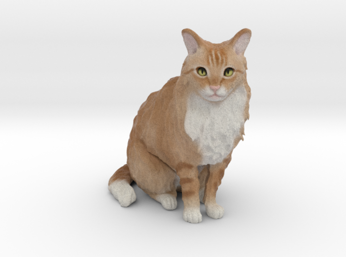 Custom Cat Figurine - Pluche 3d printed