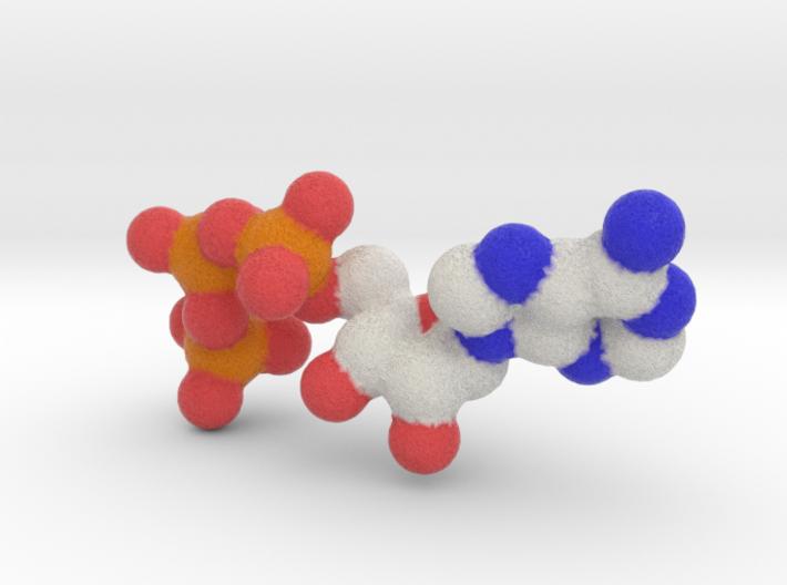ATP Molecule (4X2D) 3d printed