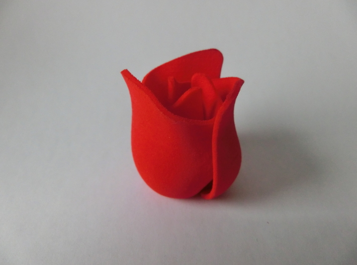 Rose 3d printed Successfull printing before shape update