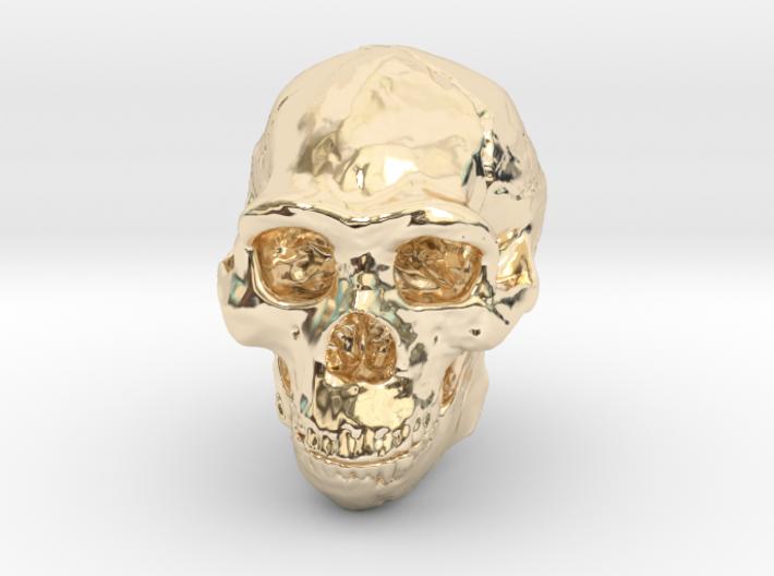 Real Skull : Homo erectus (Scale 1/4) 3d printed