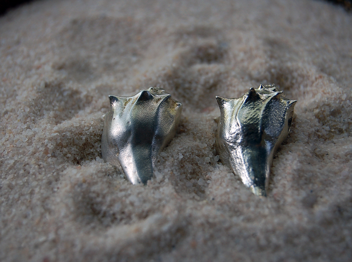A Little Sea Shell (with Hole) 3d printed Polished silver (left) Raw silver (right)