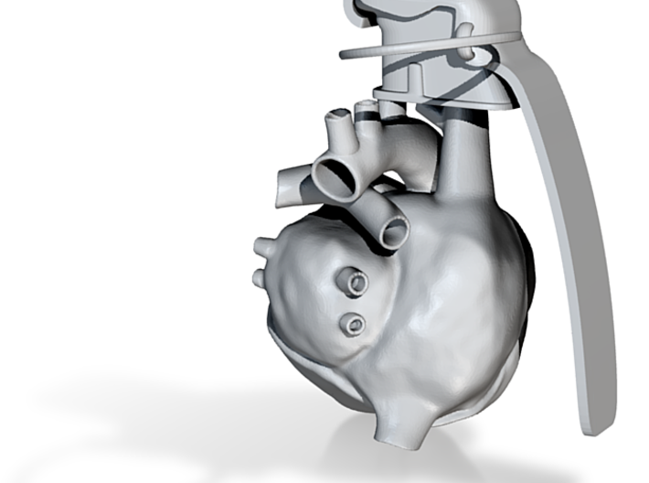 Heart Gerndae 3d printed Heart